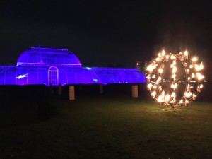 Our activity for this evening rather than shopping. Enjoying Christmas lights at Kew with friends. Photo from 2014.