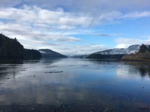 View from Quatsino